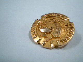 Gold Brooch 10K Yellow Gold 3.6g