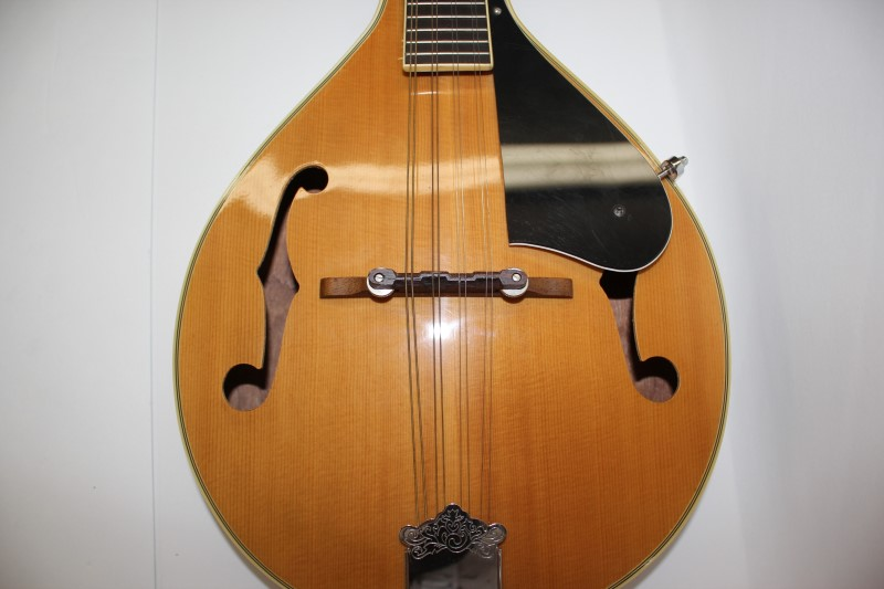 FRANCISCAN GUITAR Mandolin