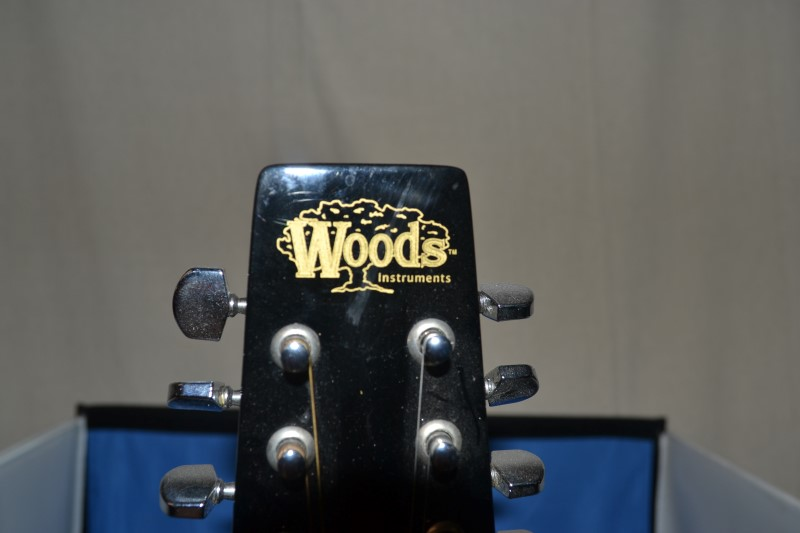 Woods Insturments Mandolin