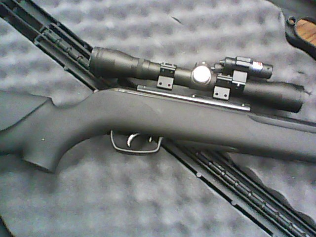 GAMO Air Gun/Pellet Gun/BB Gun VARMINT HUNTER