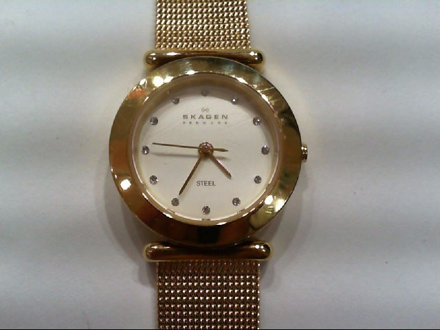 SKAGEN Gent's Wristwatch STEEL QUARTZ WRIST WATCH