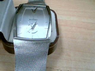 SKAGEN Gent's Wristwatch 281LSS