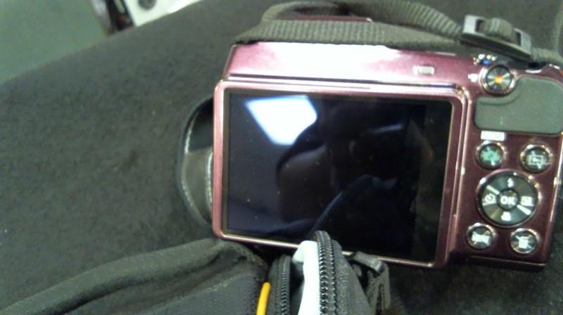 NIKON Digital Camera COOLPIX L840