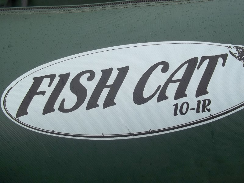 FISH CAT Fishing Boat 10-IR