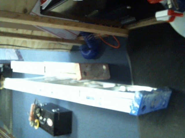 WERNER LADDER Ladder 3FT STEP LADDER