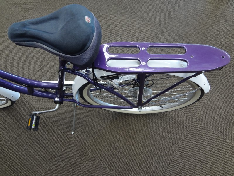 SCHWINN WOMEN'S LAKESHORE BICYCLE (PURPLE)