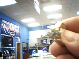 Lady's Diamond Fashion Ring 11 Diamonds .33 Carat T.W. 14K Yellow Gold 4.1g