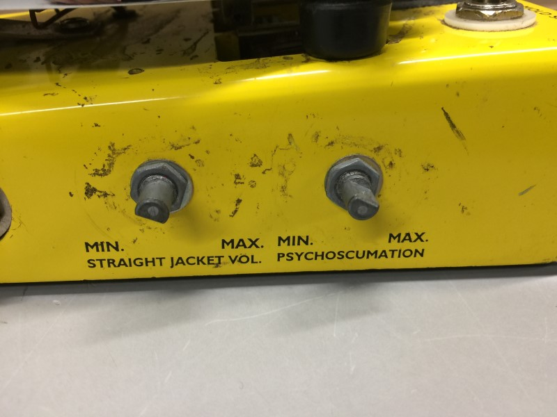 SNARLING DOGS MOLD SPORE PSYCHO-SCUMATIC WAH