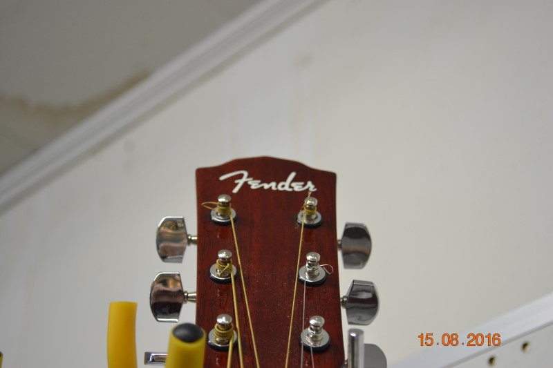 FENDER Acoustic Guitar DG-8