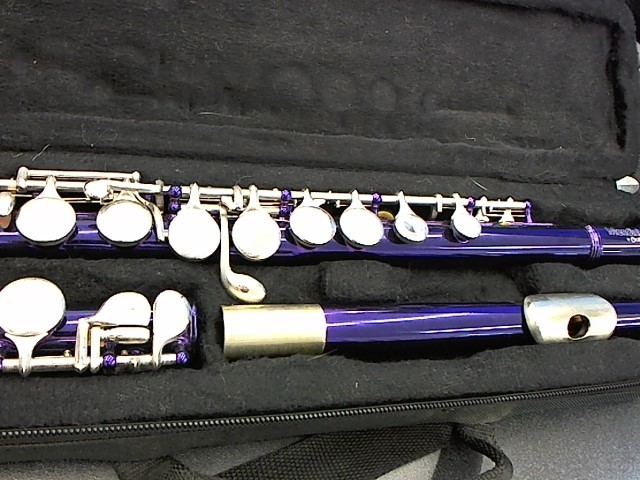 CECILIO MUSICAL INSTRUMENTS Flute FLUTE FE-280BNN