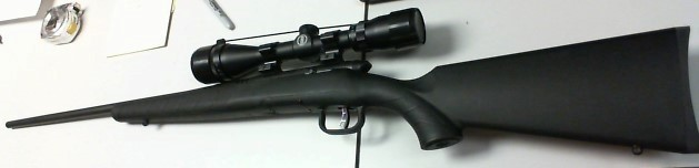 SAVAGE ARMS Rifle BMAG 17 WSM