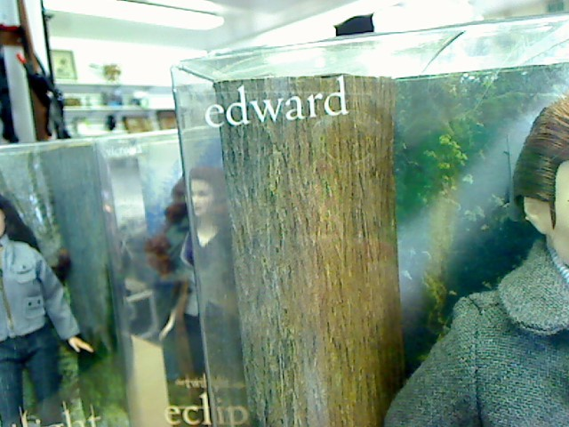 BARBIE Doll TWILIGHT EDWARD