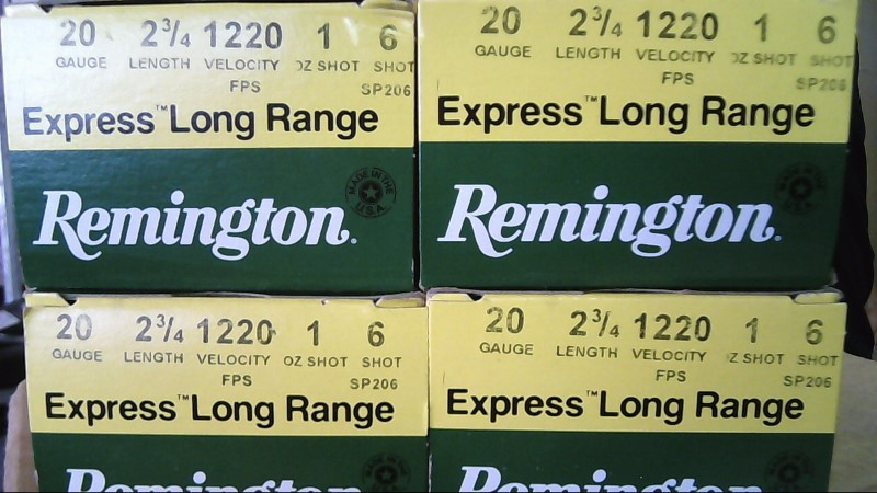 REMINGTON FIREARMS & AMMUNITION Ammunition 20 GAUGE AMMO