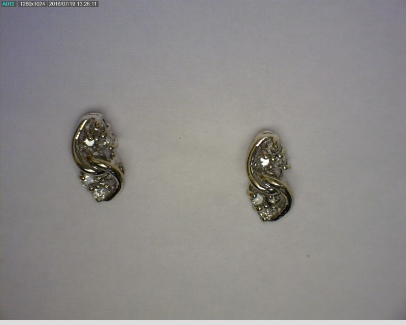 Gold-Diamond Earrings 12 Diamonds .12 Carat T.W. 14K White Gold 1dwt