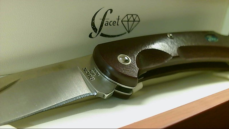Buck Knives Ecolite Plum Red Paperstone Handle Lockback Knife