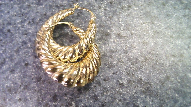Gold Earrings 10K Yellow Gold 4.8g