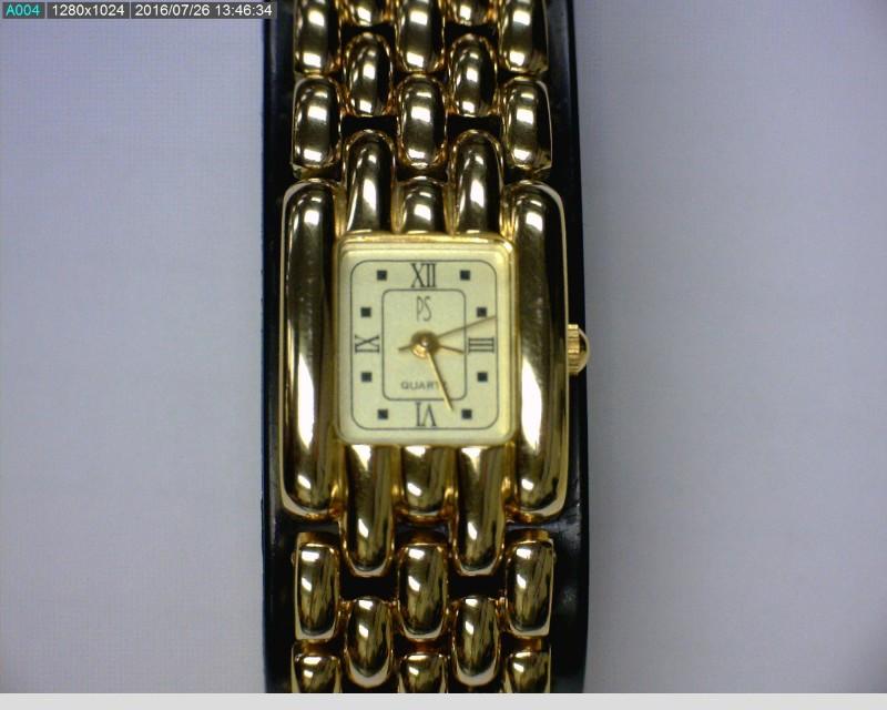 PAUL SEBASTIAN Lady's Wristwatch LDS GOLD TONE W PORCELAIN DISH