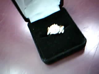 Lady's Diamond Fashion Ring 20 Diamonds .40 Carat T.W. 10K Yellow Gold 4.34g