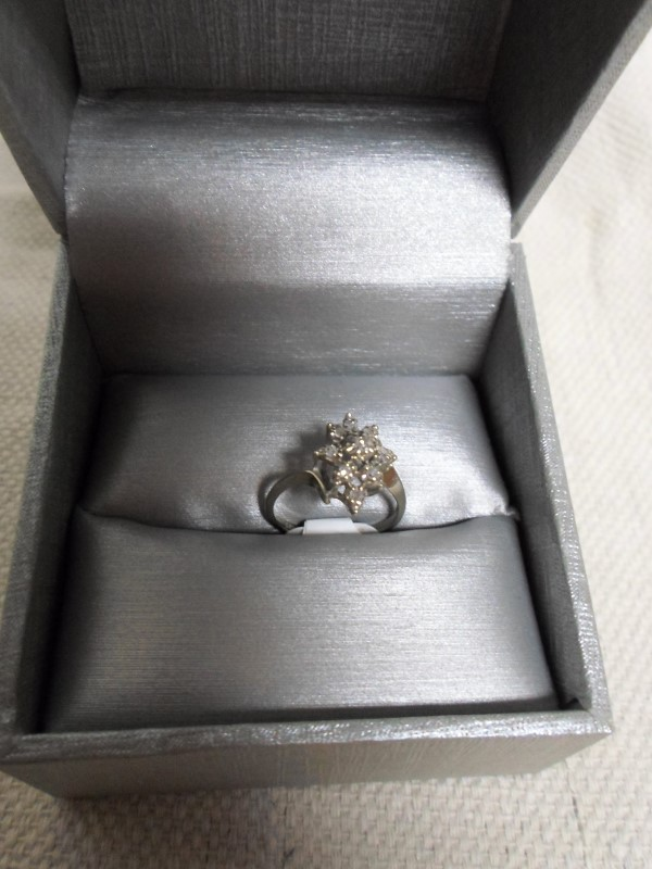 Lady's Diamond Cluster Ring 9 Diamonds .27 Carat T.W. 14K White Gold 1.8g