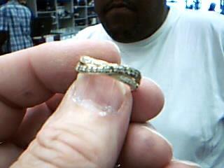 Lady's Diamond Wedding Band 22 Diamonds .44 Carat T.W. 14K Yellow Gold 3.1g