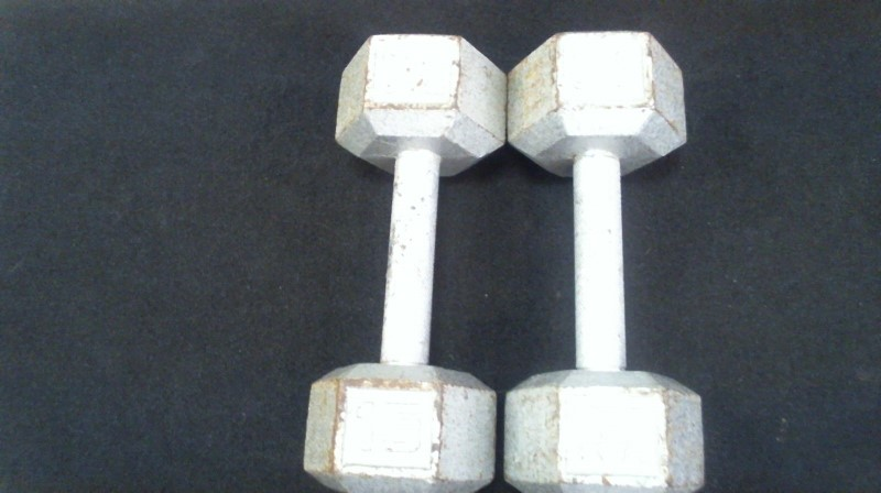 Exercise Equipment 15LBS DUMBBELLS