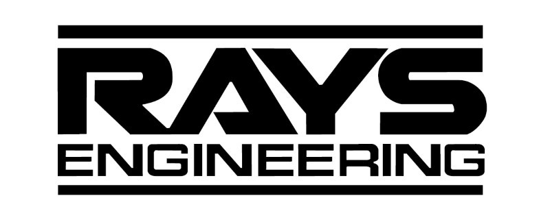 RAYS ENGINERING