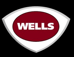 WELLS MANUFACTURING