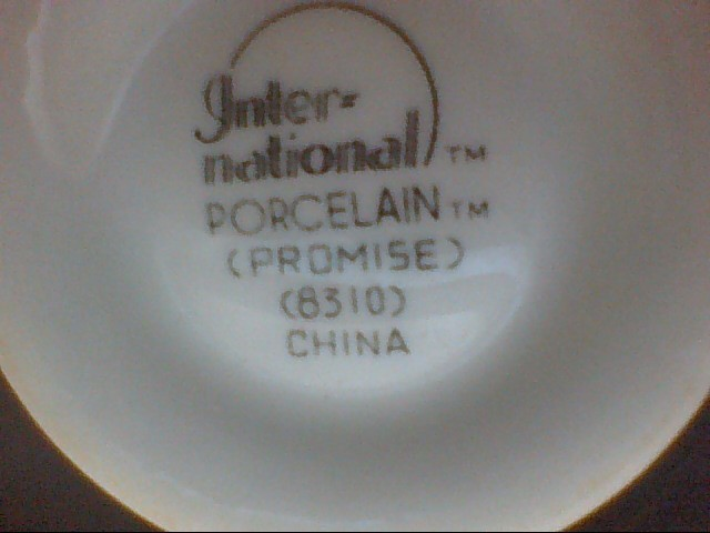 INTERNATIONAL PORCELAIN