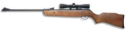 GAMO Air Gun/Pellet Gun/BB Gun HUNTER 220