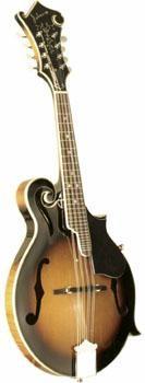 JOHNSON Mandolin MF-365