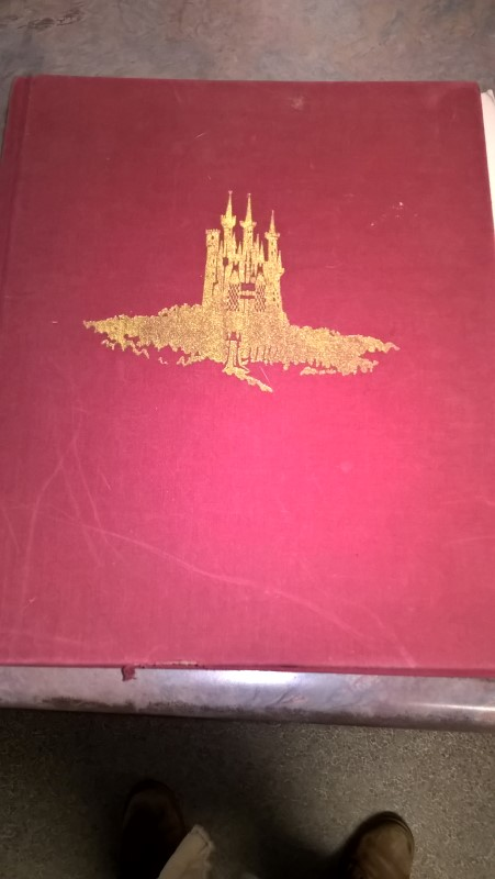 DISNEY Fiction Book DISNEY TREASURY OF CHILDREN'S CLASSICS