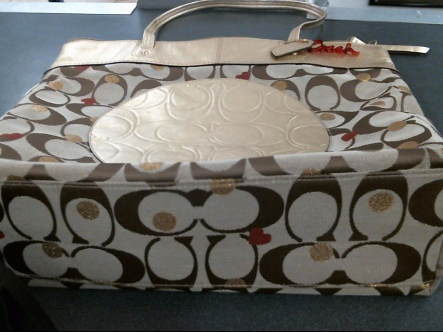 COACH Handbag F18870