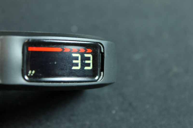 Garmin Vivofit 2 Activity Tracker Fitness with USB ANT Stick