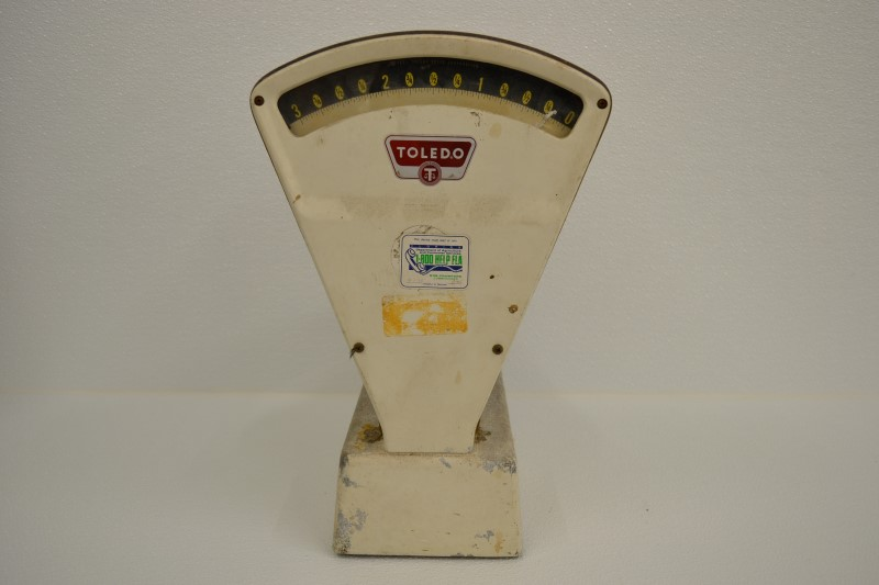 TOLEDO SCALE Scale 3111 Good | First Coast Pawn & More